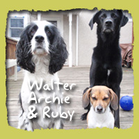 Walter, Archie & Ruby